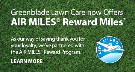 greenblade lawn care now offers airmiles reward miles